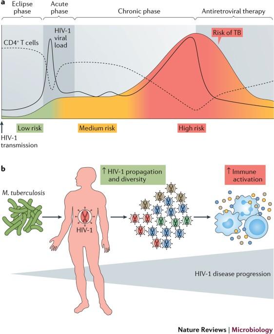 a helminthiasis patogenezise hpv év tünetei