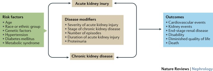 Acute Kidney Disease And Renal Recovery Consensus Report Of The Acute Disease Quality Initiative Adqi 16 Workgroup Nature Reviews Nephrology