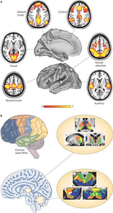 Disease and the brain's dark energy