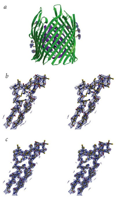 Substrate-induced transmembrane signaling in the cobalamin