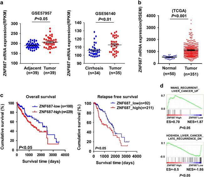 Hepatic cancer recurrence. Medicament eficient pentru paraziții corpului uman