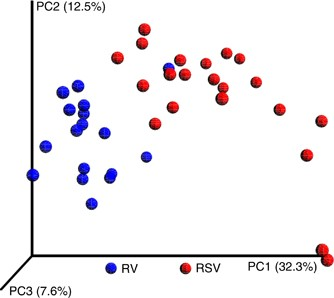Rsv Vs Rhinovirus Bronchiolitis Difference In Nasal Airway Microrna Profiles And Nfkb Signaling Pediatric Research