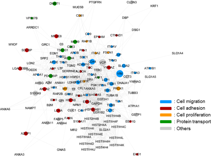 Mass spectrometry-based proteome profiling of extracellular vesicles and their roles in cancer biology