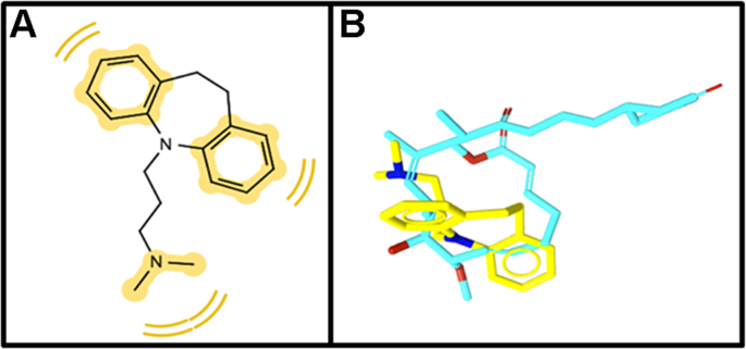 New role of the antidepressant imipramine as a Fascin1 inhibitor in colorectal cancer cells