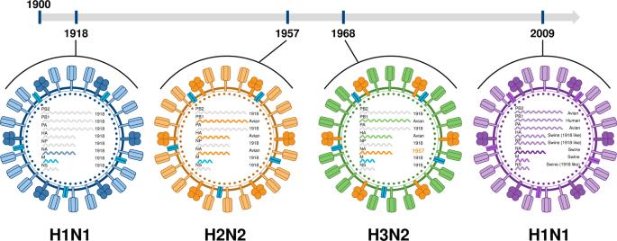 The evolution and future of influenza pandemic preparedness