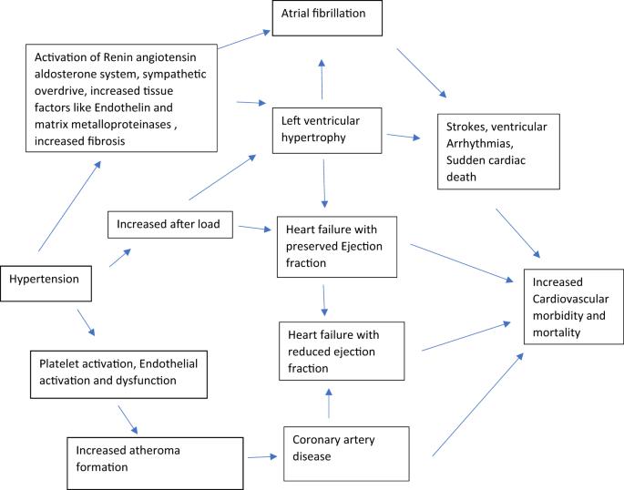 Hypertension  - cover