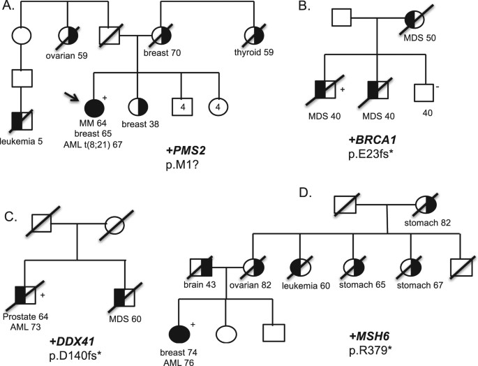 universal genetic testing for inherited susceptibility in