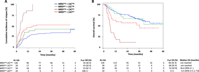 Cd34 Cd38 Leukemic Stem Cell Frequency To Predict Outcome In