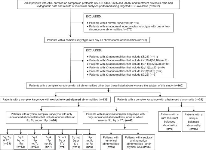 Complex karyotype in de novo acute myeloid leukemia: typical and