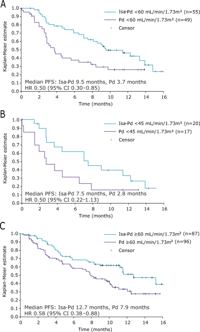 Isatuximab plus pomalidomide and dexamethasone in relapsed/refractory multiple myeloma patients with renal impairment: ICARIA-MM subgroup analysis