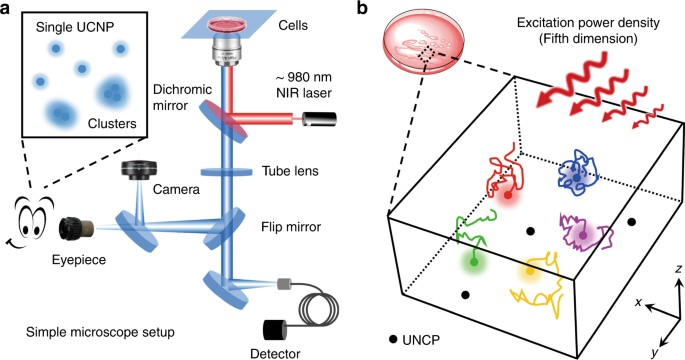 Five Dimensional Tracking Of Single Nanoparticles In Living Cells