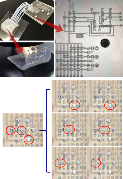 A microfluidically controlled concave–convex membrane lens using an addressing operation system