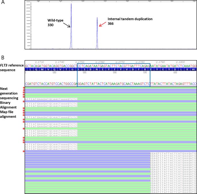 Hybridization capture-based next generation sequencing