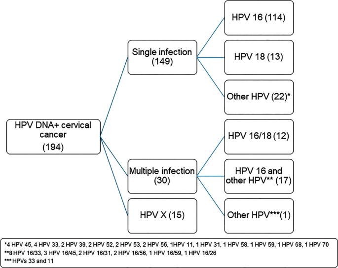 papillomavírus p16