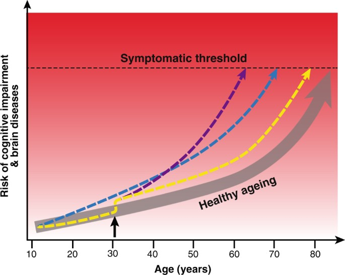 Brain age and other bodily 'ages': implications for