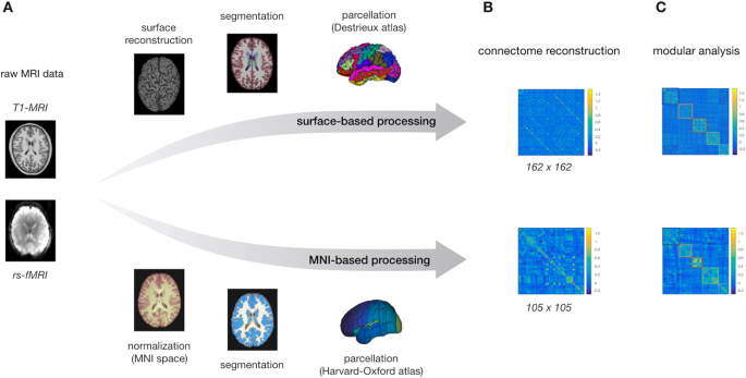 Functional connectome organization predicts conversion to psychosis in clinical high-risk youth from the SHARP program