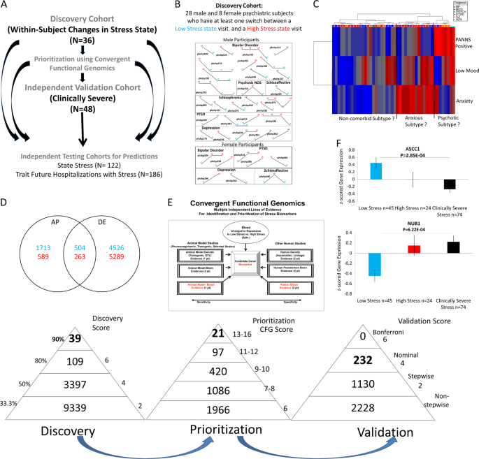 Towards precision medicine for stress disorders: diagnostic biomarkers and targeted drugs