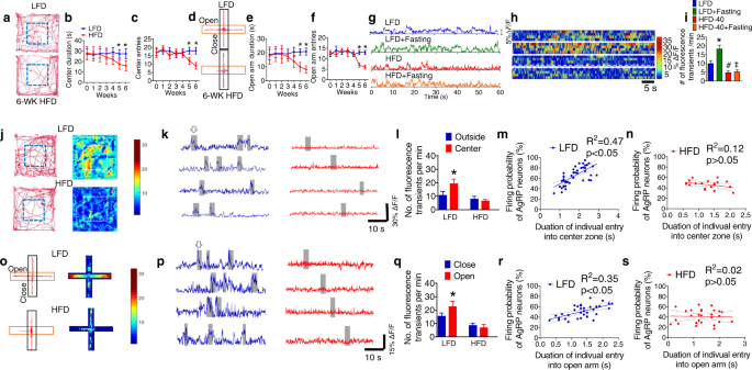 Reciprocal control of obesity and anxiety–depressive disorder via a GABA and serotonin neural circuit
