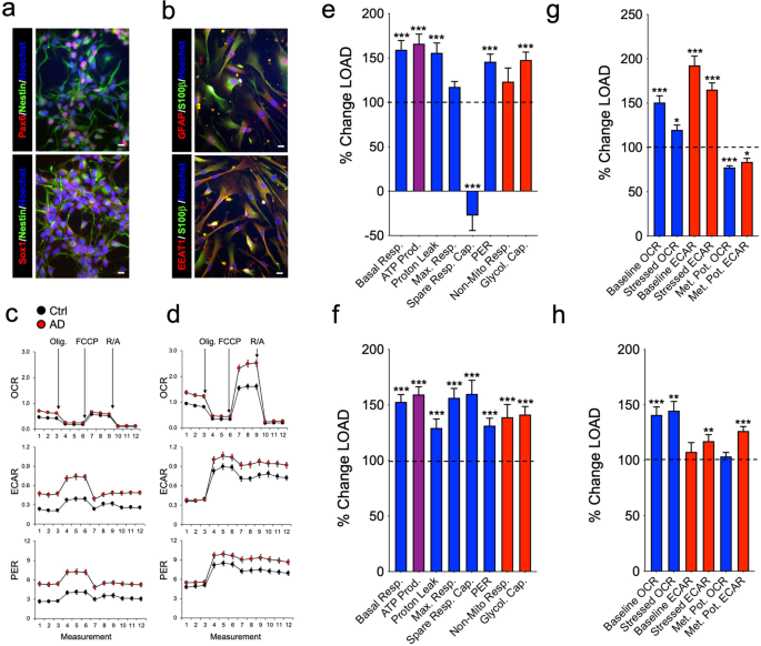 Brain cells derived from Alzheimer's disease patients have multiple specific innate abnormalities in energy metabolism