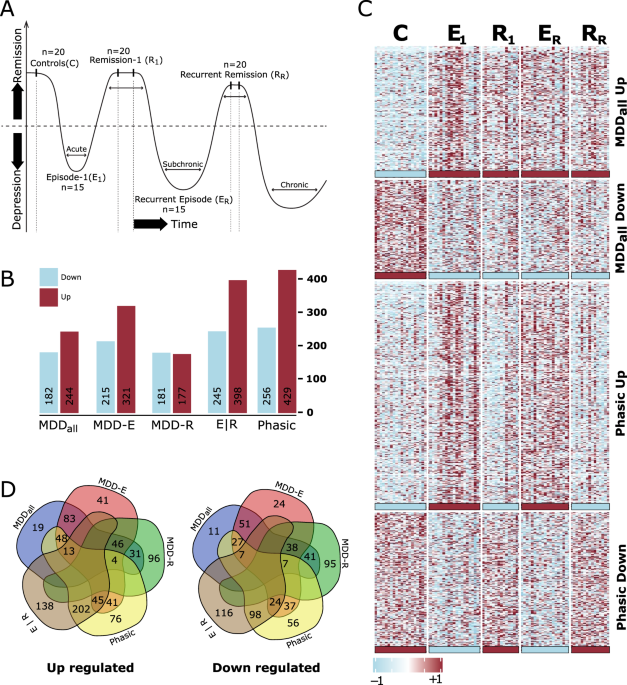Molecular characterization of depression trait and state - Molecular Psychiatry