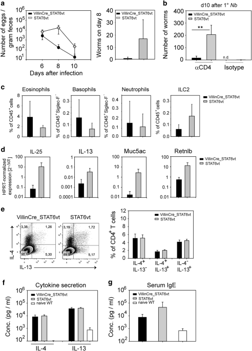 Selective Expression Of Constitutively Activated Stat6 In Intestinal