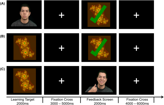 Neural modulation of social reinforcement learning by