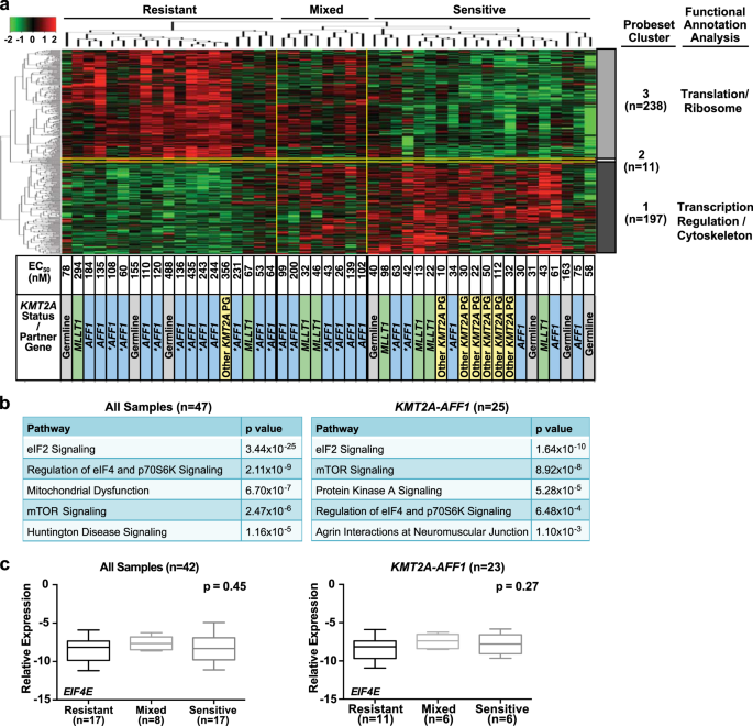 Targeting EIF4E signaling with ribavirin in infant acute