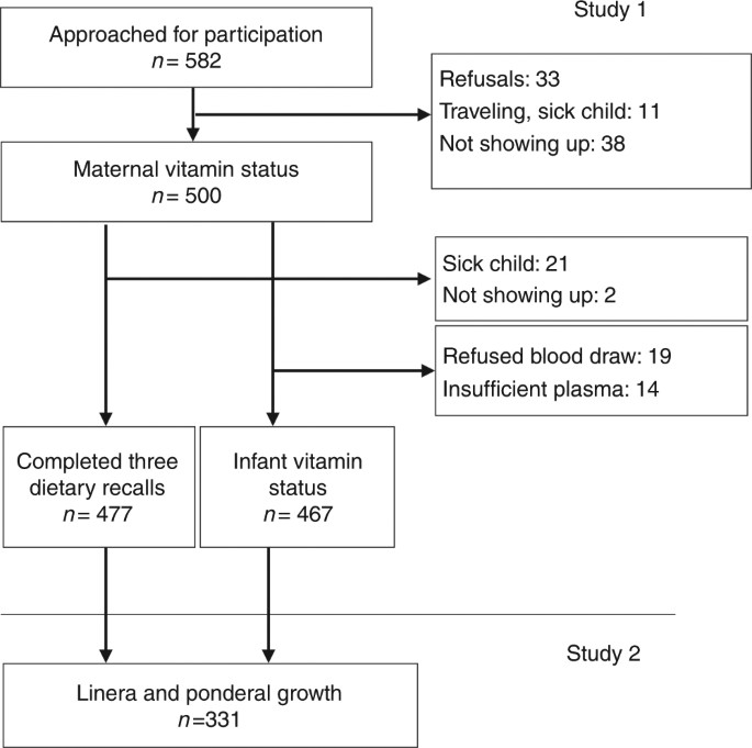 Maternal And Infant Vitamin B12 Status During Infancy Predict Linear