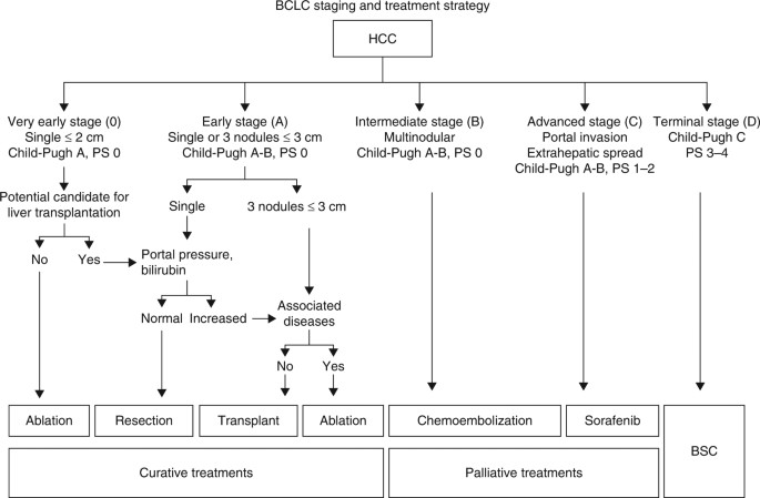 How We Approach It Treatment Options For Hepatocellular Carcinoma