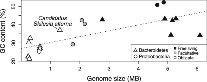 evolutionary loss and replacement of buchnera the obligate