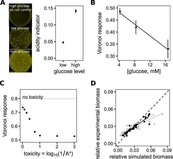 The Spatial And Metabolic Basis Of Colony Size Variation The Isme