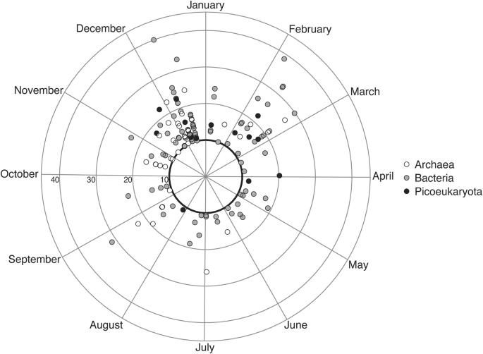 Rhythmicity Of Coastal Marine Picoeukaryotes Bacteria And Archaea