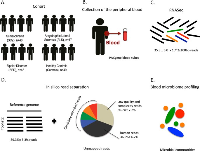 Transcriptome analysis in whole blood reveals increased microbial diversity in schizophrenia
