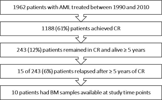 Late relapse in acute myeloid leukemia (AML): clonal evolution or