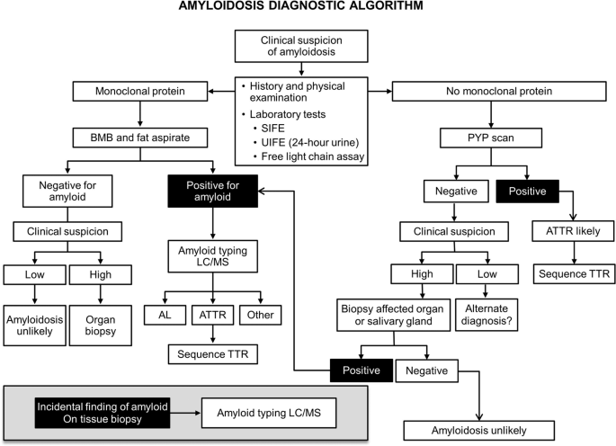Immunoglobulin light chain amyloidosis diagnosis and treatment algorithm 2021