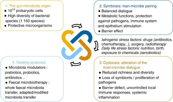 Microbial Transplant May Treat Gut >> High Gastrointestinal Microbial Diversity And Clinical Outcome In