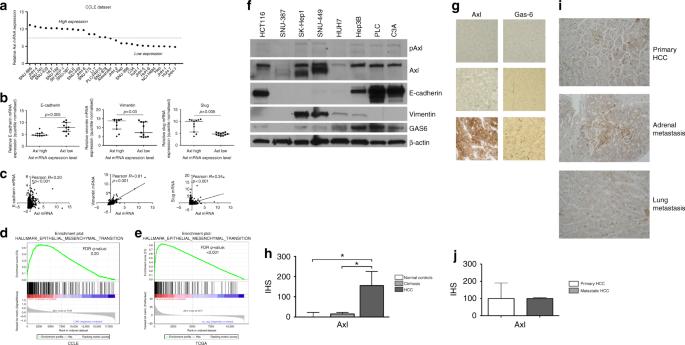 Integrated analysis of multiple receptor tyrosine kinases