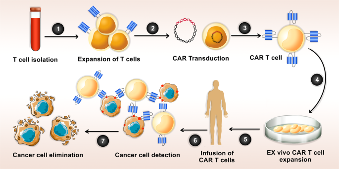 Combination therapy with CAR T cells and oncolytic viruses: a new era in cancer immunotherapy