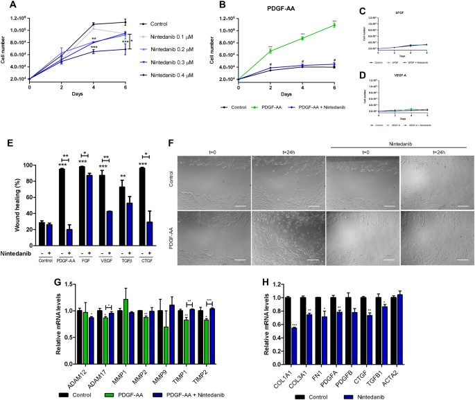 Nintedanib decreases muscle fibrosis and improves muscle function in ...
