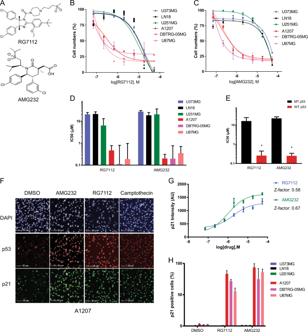 Potent effect of the MDM2 inhibitor AMG232 on suppression of