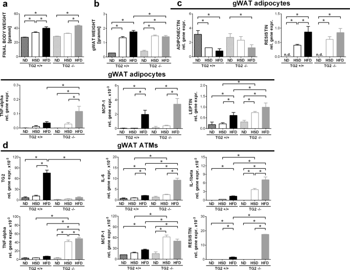 Loss of transglutaminase 2 sensitizes for diet-induced obesity-related inflammation and insulin resistance due to enhanced macrophage c-Src signaling