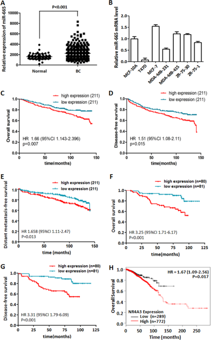 miR-665 expression predicts poor survival and promotes tumor metastasis by targeting NR4A3 in breast cancer