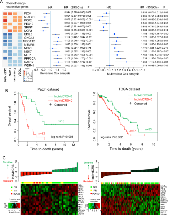 Large Scale Integrated Analysis Of Ovarian Cancer Tumors And Cell Lines Identifies An Individualized Gene Expression Signature For Predicting Response To Platinum Based Chemotherapy Cell Death Disease