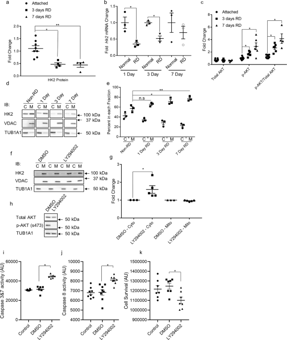 Hexokinase 2 is dispensable for photoreceptor development but is required for survival during aging and outer retinal stress