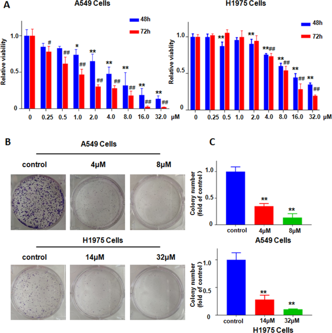 Nitidine chloride possesses anticancer property in lung cancer cells through activating Hippo signaling pathway