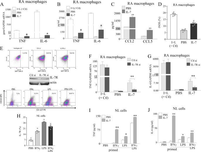 Macrophages are the primary effector cells in IL-7-induced arthritis
