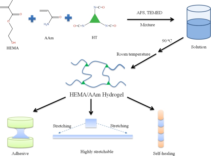 Temperature-regulated flexibility of polymer chains in rapidly self-healing hydrogels