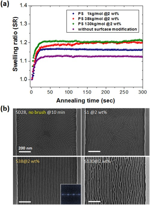 Enhanced Self Assembly Of Block Copolymers By Surface Modification