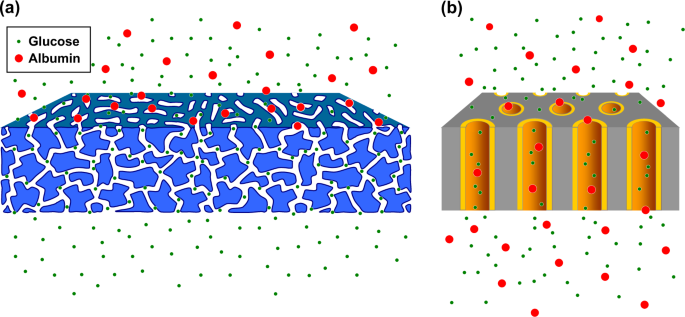Development of highly functional membranes through