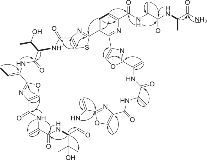 Ala Geninthiocin A New Broad Spectrum Thiopeptide Antibiotic